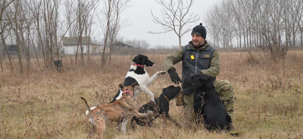 Milan i psi